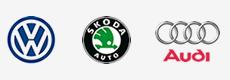 Logo vaesa